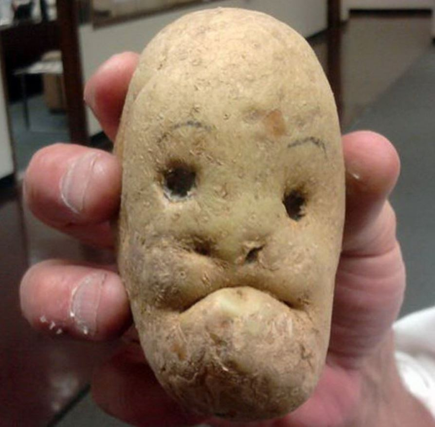 Image amusante  Monsieur patate , photo blague